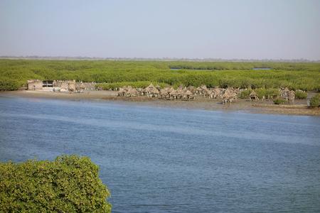 Island of clam shells, Fadiouth, Petite Cote, Senegal