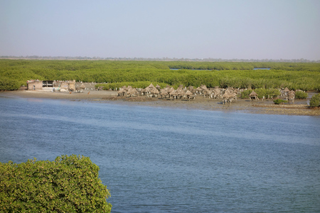 Island of clam shells, Fadiouth, Petite Cote, Senegal
