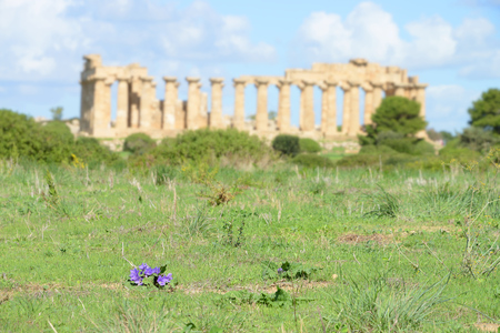 Ruined temple in the ancient city of Selinunte, Sicily, Italy