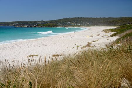 Swimcart Beach, Bay of Fires, Tasmania, Australia