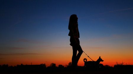 Silhouette young woman with a dog against the sky at sunset.