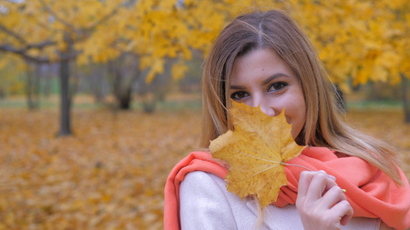Portrait Of Lady In A Beige Coat And Orange Scarf Plays With Autumn Yellow Leaf Stok Fotoğraf