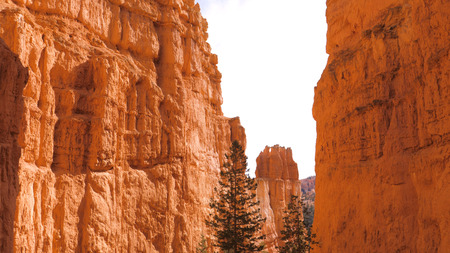 Bottom UP Sand Mountain Red Orange Bryce Canyon National Park Stok Fotoğraf