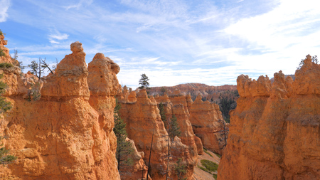 Bryce Canyon With Orange Red Mountains And Cliffs Stok Fotoğraf