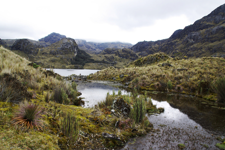 Scenic view of the toreadora lake in the cajas parc