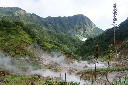 Scenic green landscape of the volanic island of dominica in the caribbian antilles