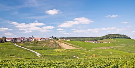 champagne region: Village of Cramant in Champagne Region near Epernay,France Stock Photo