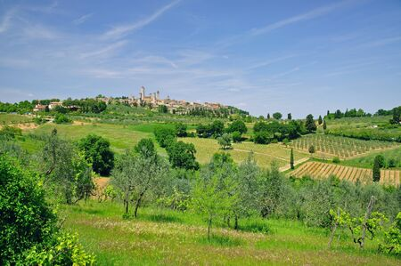 the famous Village of San Gimignano in Tuscany,Italy photo