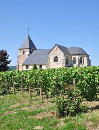 champagne region: Church in Vineyard near Epernay in Champagne Region,France