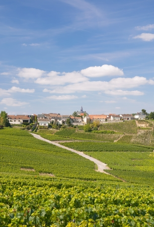 Village of Cramant in Champagne Region near Epernay,France Stock Photo