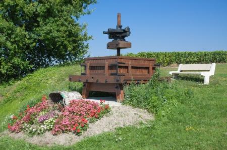 champagne region: idyllic Place in Champagne Region near Epernay,France