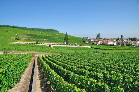 Village of Oger in der Nähe Epernay in der Champagne Region, Frankreich Lizenzfreie Bilder