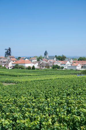 champagne region: famous Wine Village of Oger near Epernay,Champagne region,France