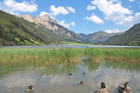 tal: Lake Haldensee in Tannheimer Tal,Tirol,Austria Stock Photo