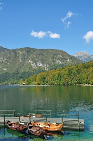 bohinj: Lake Bohinj in Triglav National Park near Bled,Slovenia