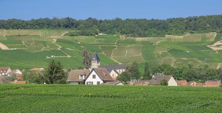 champagne region: Village in Champagne region near Epernay,France