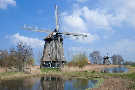 typical Landscape in Northern Holland near Alkmaar,Netherlands