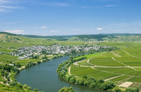 mosel: View of Leiwen an der Mosel,Mosel Valley,Mosel River,Germany Stock Photo