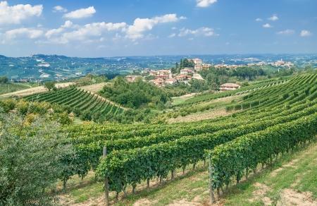 Weinberg-Landschaft in der Nähe von Asti im Piemont, Italien Lizenzfreie Bilder