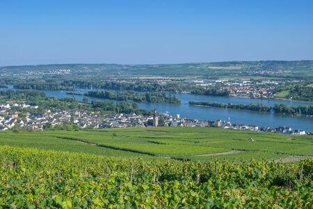 rudesheim: Ruedesheim,Rheingau,Rhine River,Germany