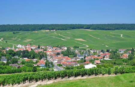 champagne region: Wine Village of Moussy near Epernay,Champagne region,France Stock Photo