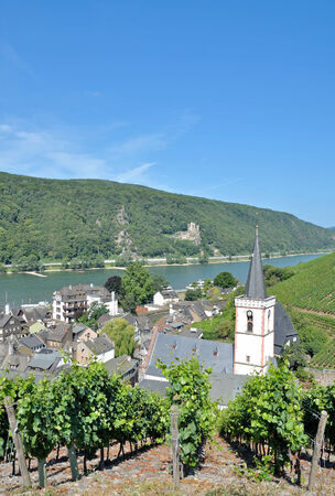 rudesheim: Wine Village of Assmannshausen near Ruedesheim,Rheingau,Rhine River,Germany