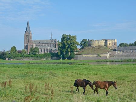 maas: Kessel at Maas River,Limbourg,Netherlands