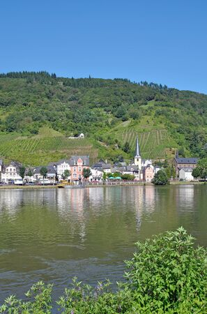 alf: Wine Village of Alf at Mosel River near Cochem Mosel Valley, Germany