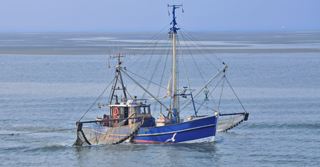 sea fishing: Crab Fishing Trawler,North Sea,East Frisia,Germany Stock Photo