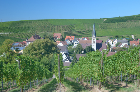 wine road: Wine Village,Baden Wine Route,Black Forest,Germany Stock Photo