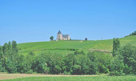 champagne region: Vineyard Landscape in Champagne region near Epernay,France Stock Photo