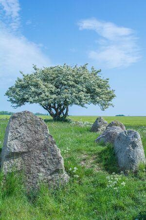 megalithic Tomb of Nobbin near Kap Arkona on Ruegen Island,Germany