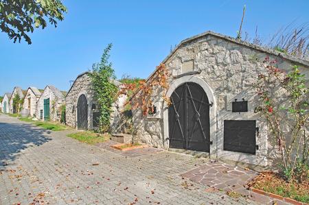 wine road: Wine Cellar Road of Breitenbrunn at Lake Neusiedler See in Burgenland,Austria
