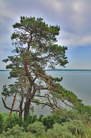 mecklenburg western pomerania: Lake Achterwasser on Usedom Island at baltic Sea,Mecklenburg western Pomerania,Germany Stock Photo