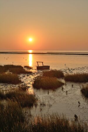 saxony: Sunset in East Frisia at wadden Sea,North Sea,Lower saxony,Germany