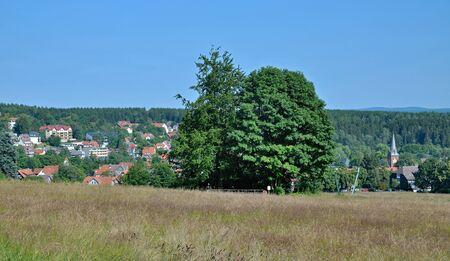 brocken: Village of Braunlage in Harz,National Park,Germany