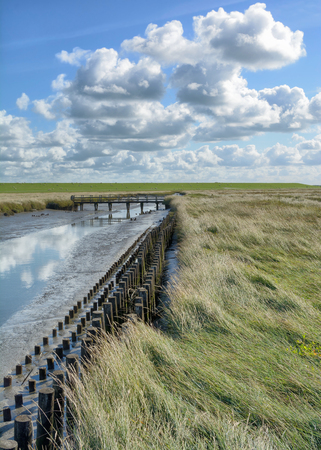 Salt Meadow and Canal in Westerhever at North Sea,North Frisia,Germany Stock Photo