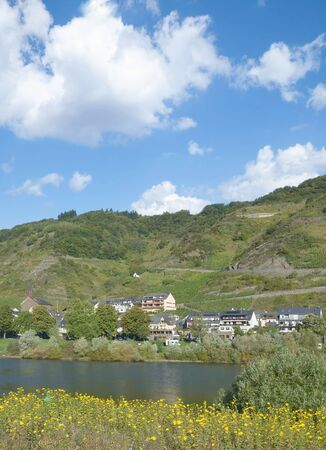 Wine Village of Valwig at Mosel River in Mosel Valley,Rhineland-Palatinate,Germany