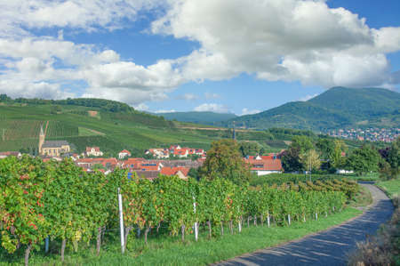 Wine Village of Birkweiler,Palatinate,Germany