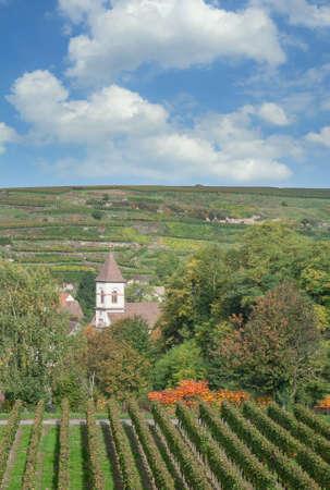 Achkarren in Kaiserstuhl wine region,Black Forest,Germany Standard-Bild