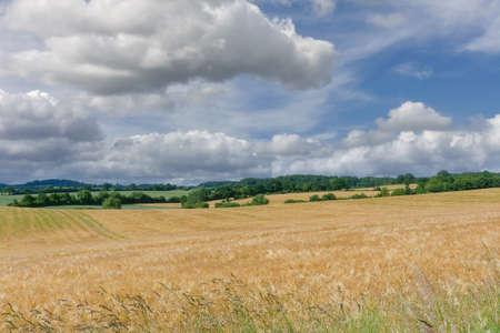 Landscape in Holstein Switzerland,Schleswig-Holstein,Germany Standard-Bild