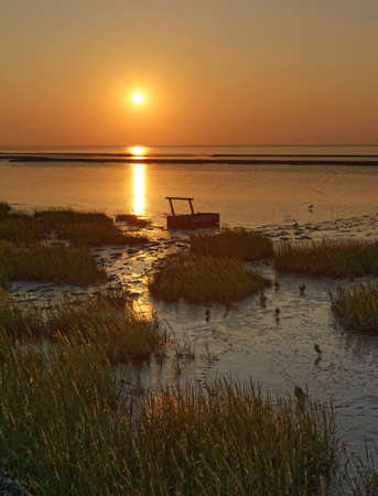 Evening in Wattenmeer National Park,North Sea,Germany