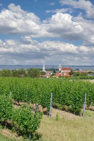 Wine Village of Rust in Burgenland,Neusiedler See,Austria