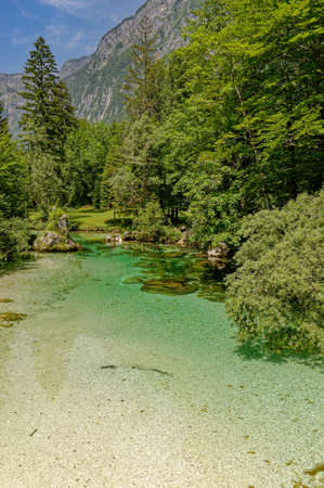 Sava Bohinjka River in Triglav National Park,Slovenia