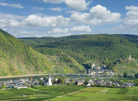 Vineyard Landscape near Beilstein in Mosel Valley,Germany