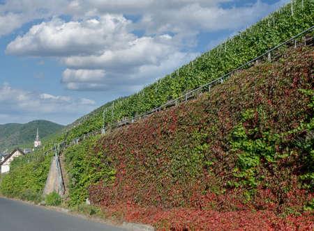 Wine Village of Ediger-Eller,Mosel Valley,Germany