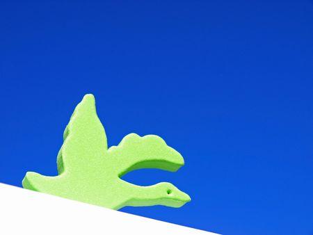 Green bird on angle photo
