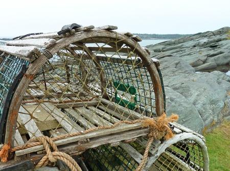 lobster pots: Lobster traps up close