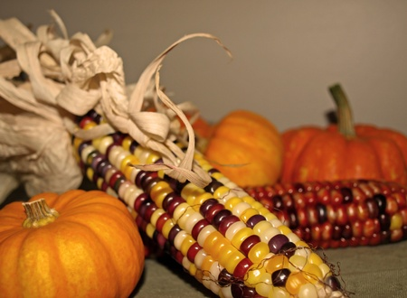Harvest decor of corn and autumn gourds