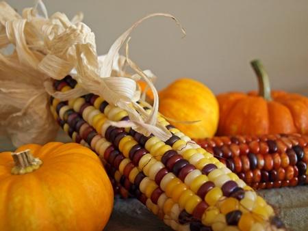収穫のトウモロコシ、ひょうたんの秋の装飾 写真素材 - 11011214